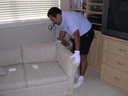 Upholstery Cleaning Hi Tech Cleaning Service In Derry